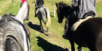 Fun Horseback Riding